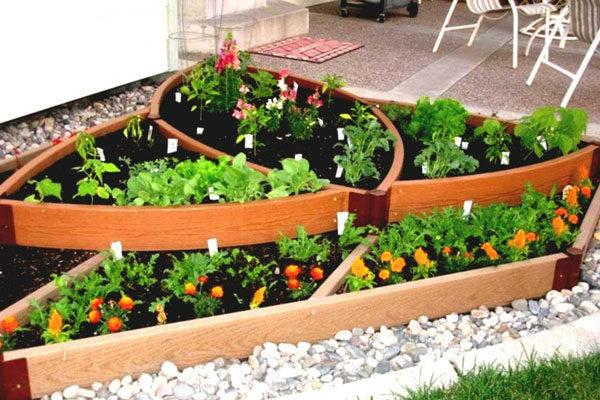 Fazer uma horta