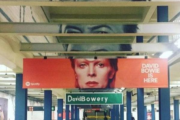 David Bowery