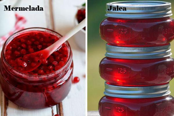 Marmelada e geleia