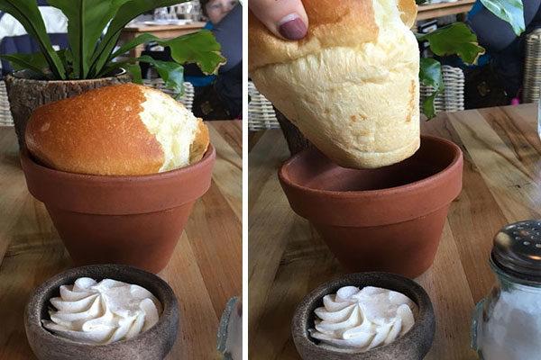 Dentro de um vaso