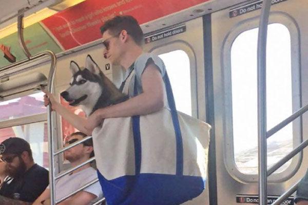 A única maneira de entrar no metrô