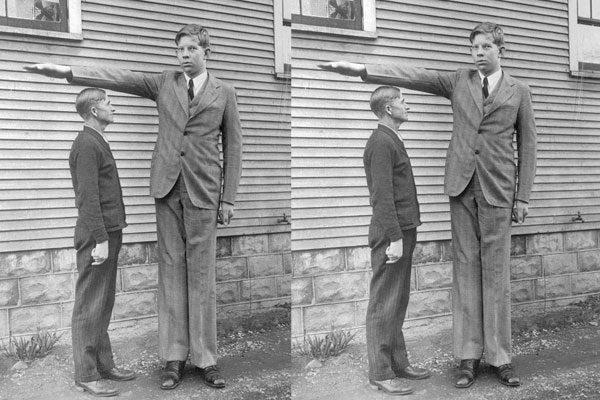 Mais alto que o pai