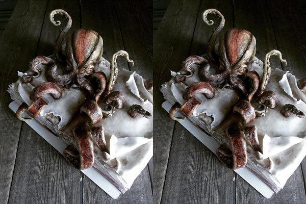 Um kraken